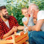 Die Familienstiftung dient als sicherer Hafen, um Ihre Pläne einzuleiten.