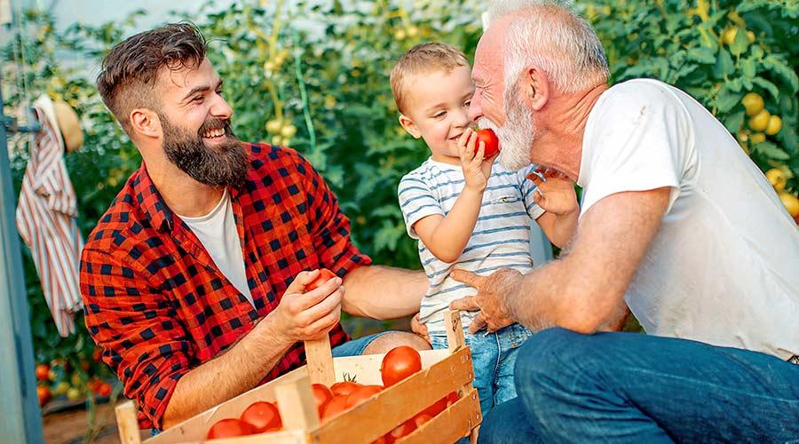 Familienstiftung: Wie verbessert das den Unternehmensverkauf?