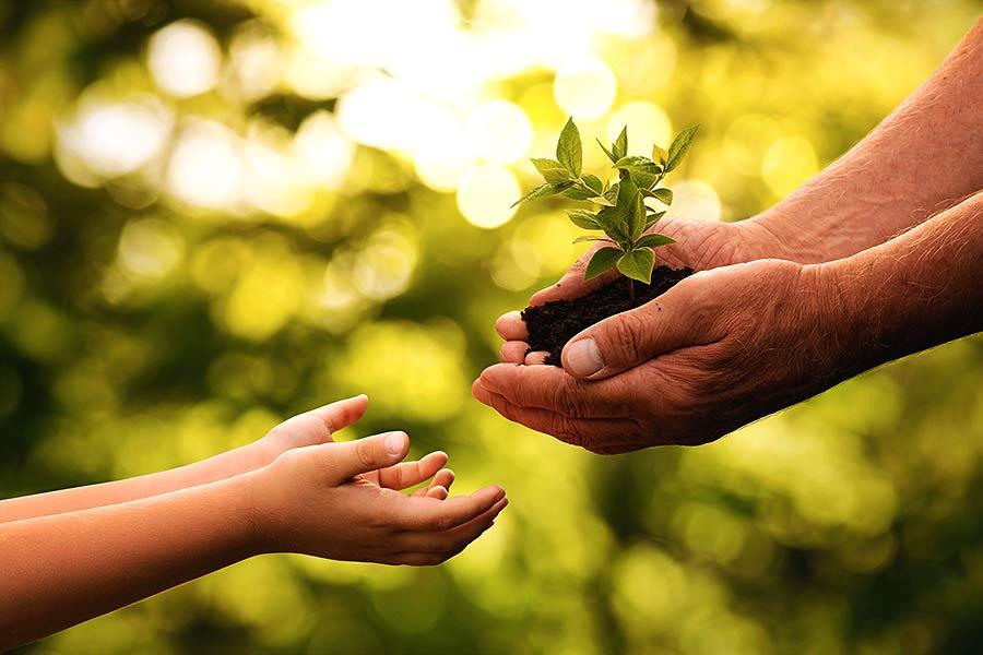 Familieninterne Nachfolge: Etwas in die Hände der nächsten Generation weiter geben